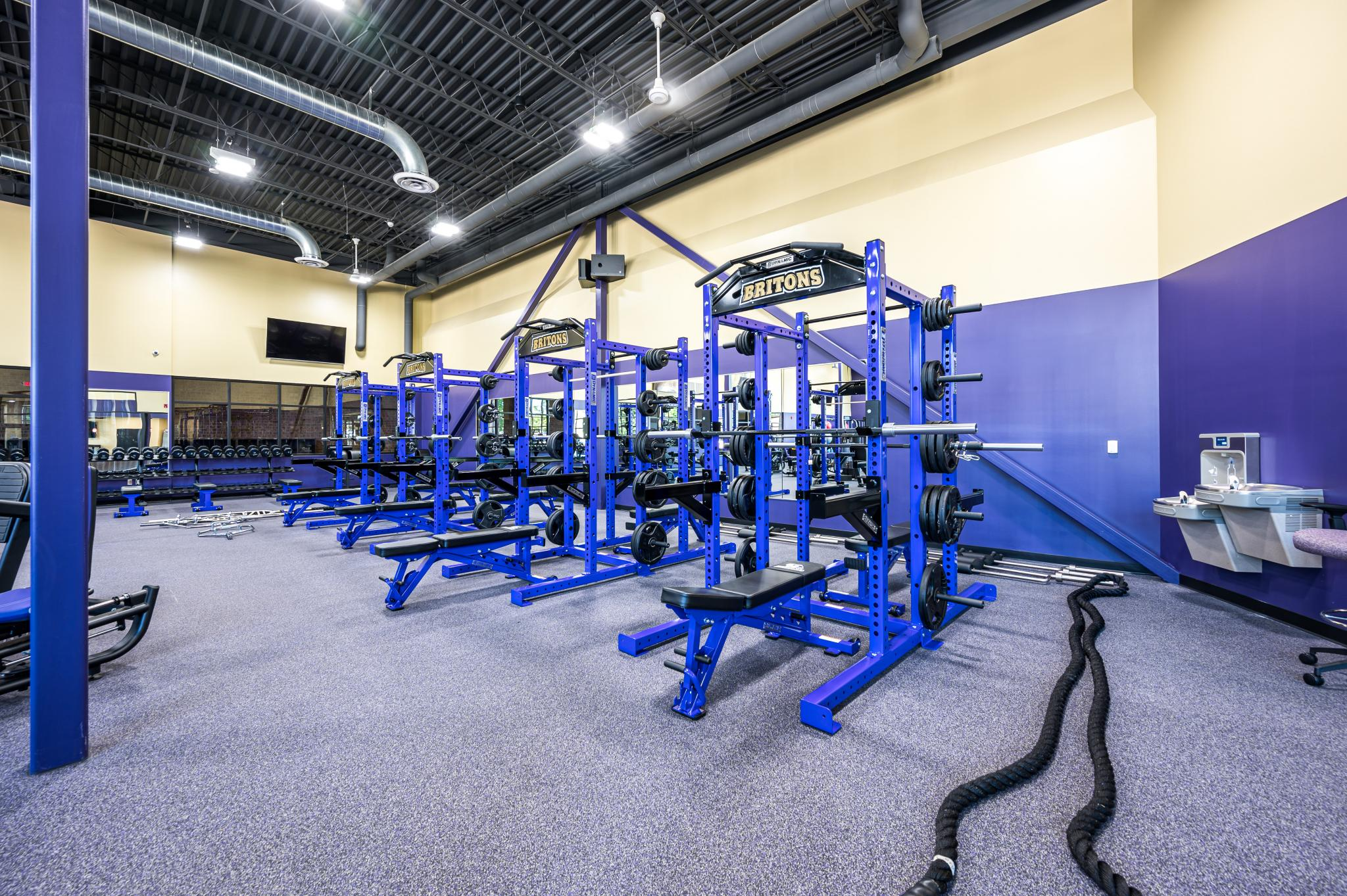 image of purple workout equipment
